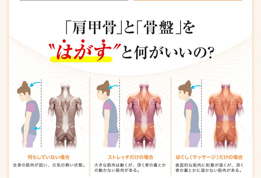 肩甲骨と骨盤をはがすと何がいいのか
